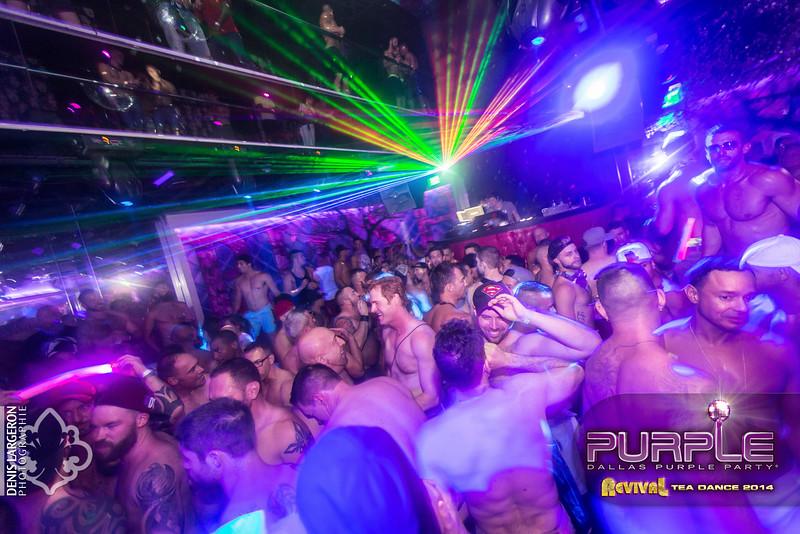 2014-05-11_purple07_037-3257838072-O.jpg
