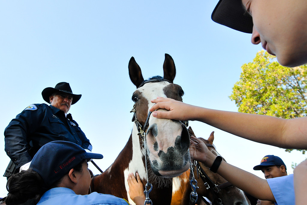 . Cadets visit with a mounted officer\'s horse following a 9/11 remembrance ceremony at the Public Safety Academy in San Bernardino on Wednesday, Sept. 11, 2013. (Photo by Rachel Luna / San Bernardino Sun)