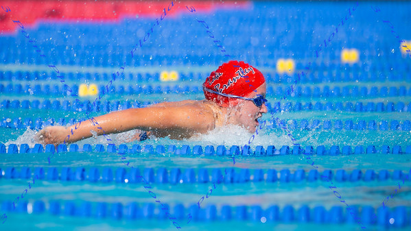 LBHS Swimming 2019-2020