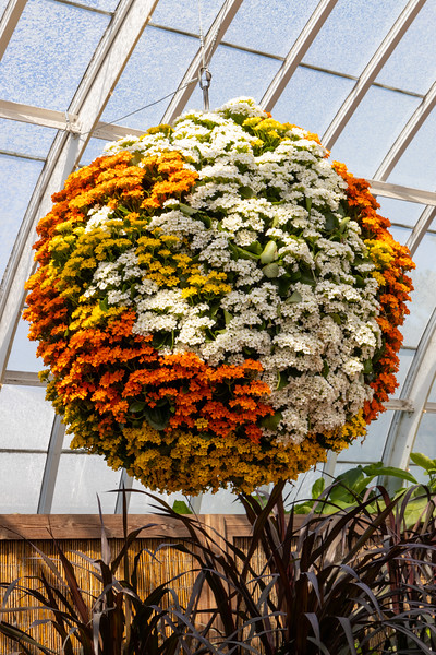 Phipps Botanic Gardens-7576.jpg