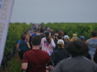 Run the Vineyards - Pindar 5K 2021