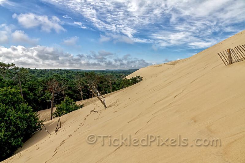The Sand Encroaches
