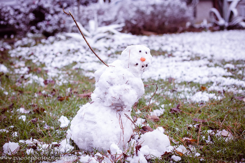 paone photography - snow day 2017-3872-2.jpg