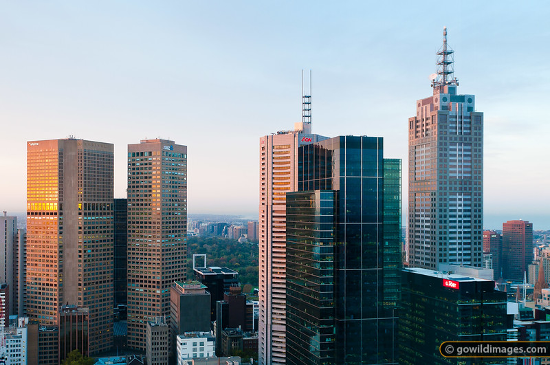 Early morning city skyline