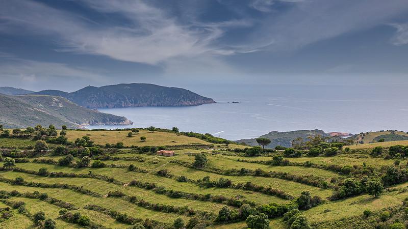 Un air de Toscane sur la route menant à la plage d'Arone (An air of Tuscany on the road to Arone beach)