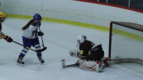 Lady Wamps Hockey vs Weymouth 011213