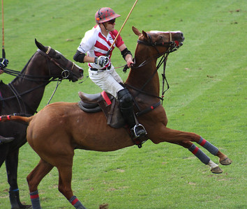 2017-09-09 Haviland Hollow 8th Annual Charity Polo Cup