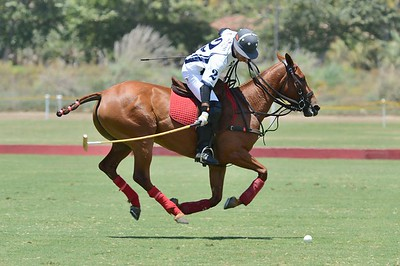 Horse polo at Rancho Santa Fe 2016
