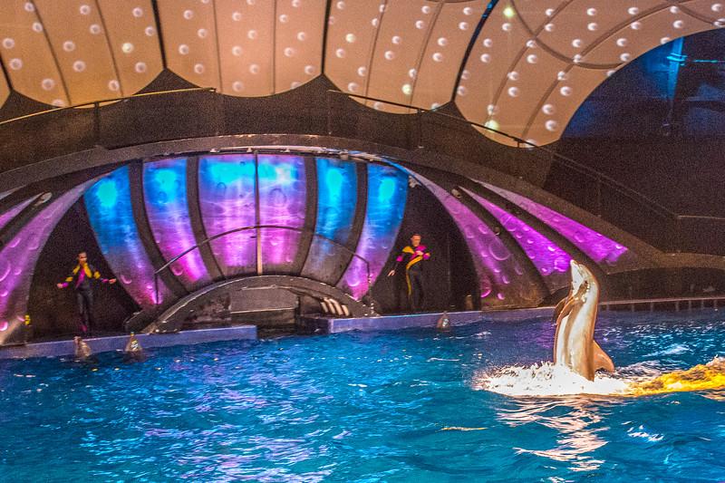GA Aquarium with Linc, Ali & Abe-104.jpg
