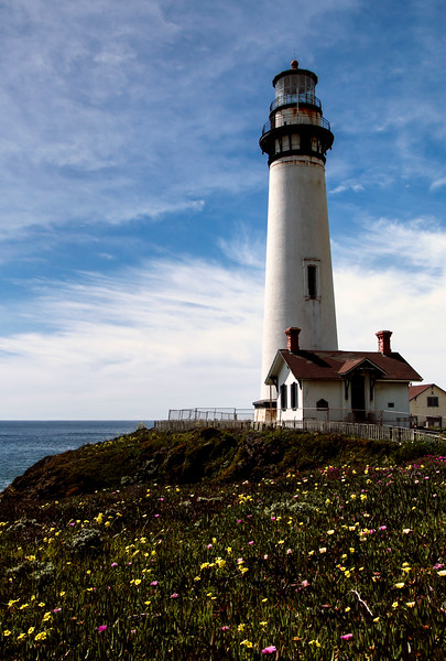 Pigeon Point Lighthouse-0303-pse.JPG