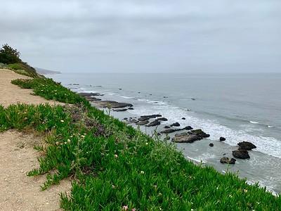 Pacific Coast - Spring 2019