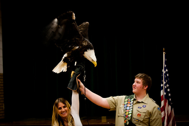 martin eagle-40.jpg