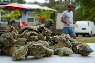 111: Oyster Fest at Chip & Donna's