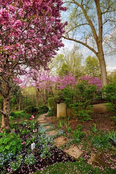 Garden 1, 326.jpg