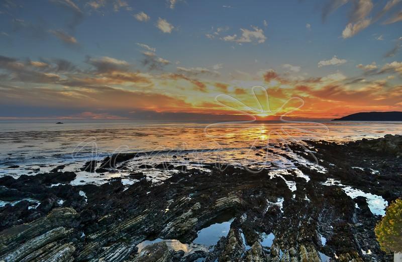Shell Beach_7
