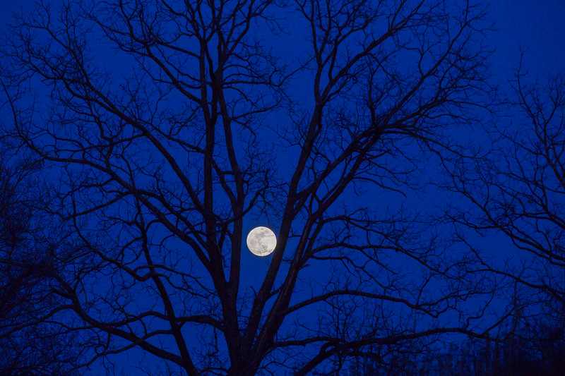 Moon, with blue