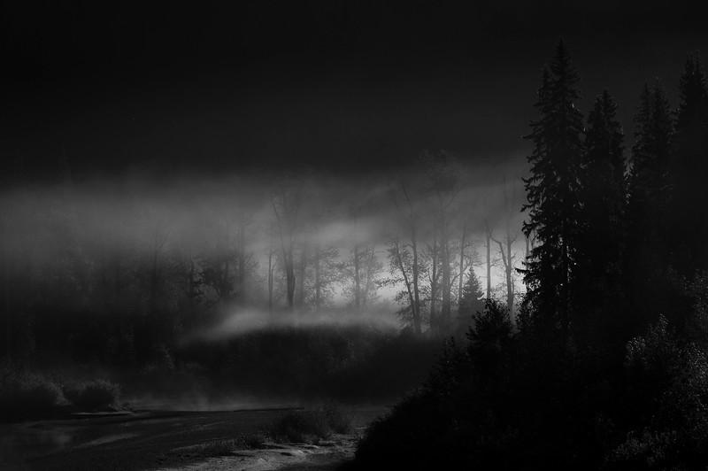 Banff to Jasper -352.jpg