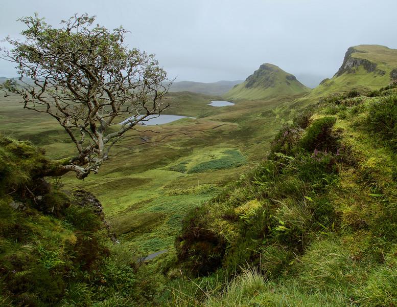 The Quiraing - Isle of Skye
