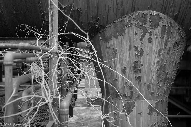 Hoover Mason Trestle-19.jpg