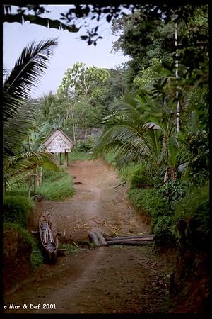 Indonesia - Borneo