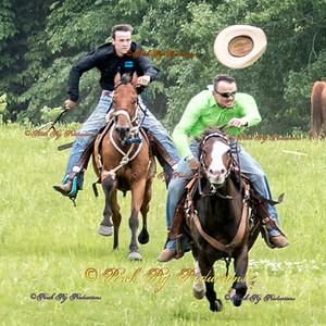 Rock Bottom 2016 Ponies