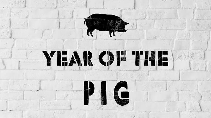 2019 Year of the Pug [Spray Animation 1].mp4