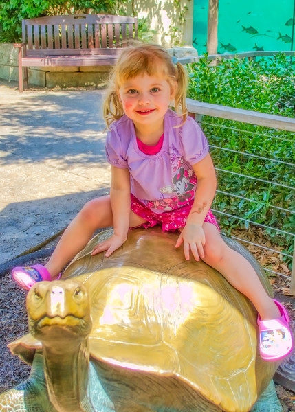 DSR_20120823Zoo with Nat and Jules288-Edit.jpg