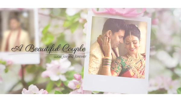 Vighnesh & Sindhu Wedding Highlights