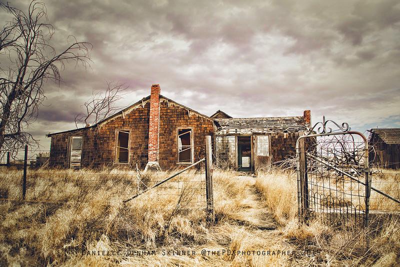 The Rosebush House