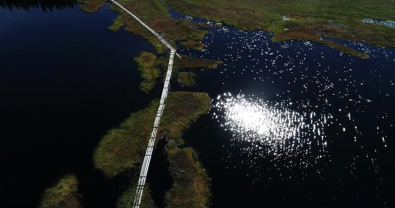 Aerial: backwards top down flight over a wooden footbridge crossing a lake