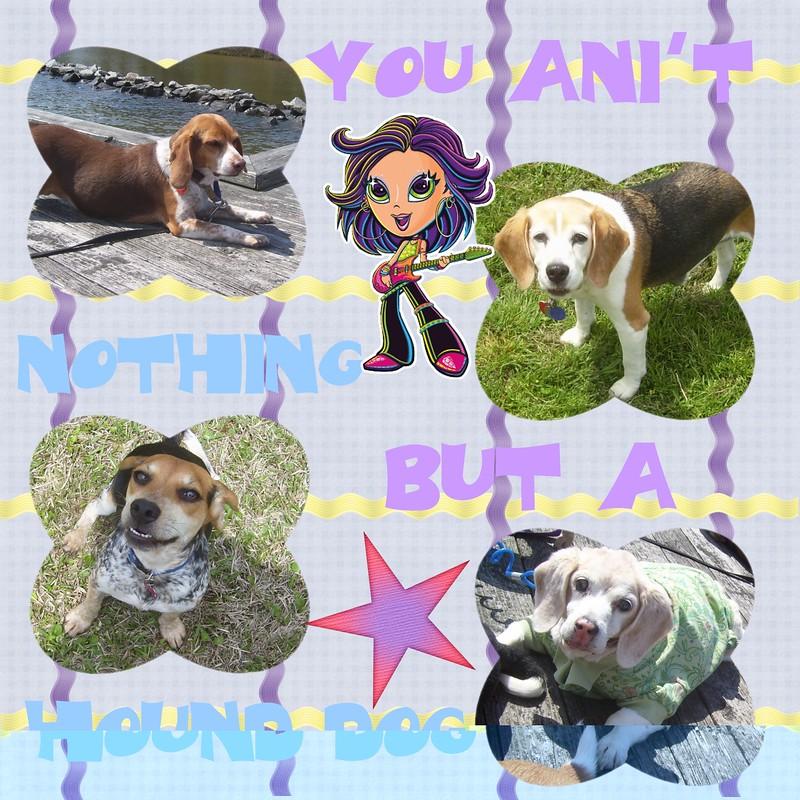 Hound-Dog-000-Page-1.jpg