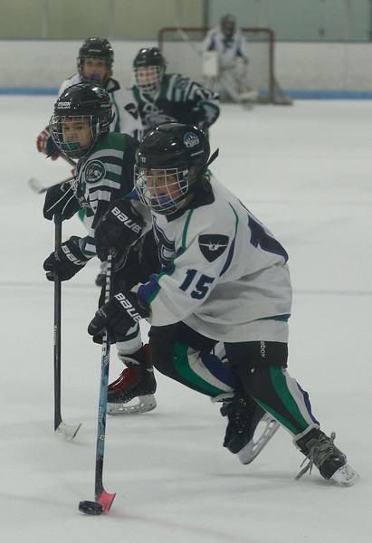 2016-Jan_29-Hockey-JPM0551.jpg