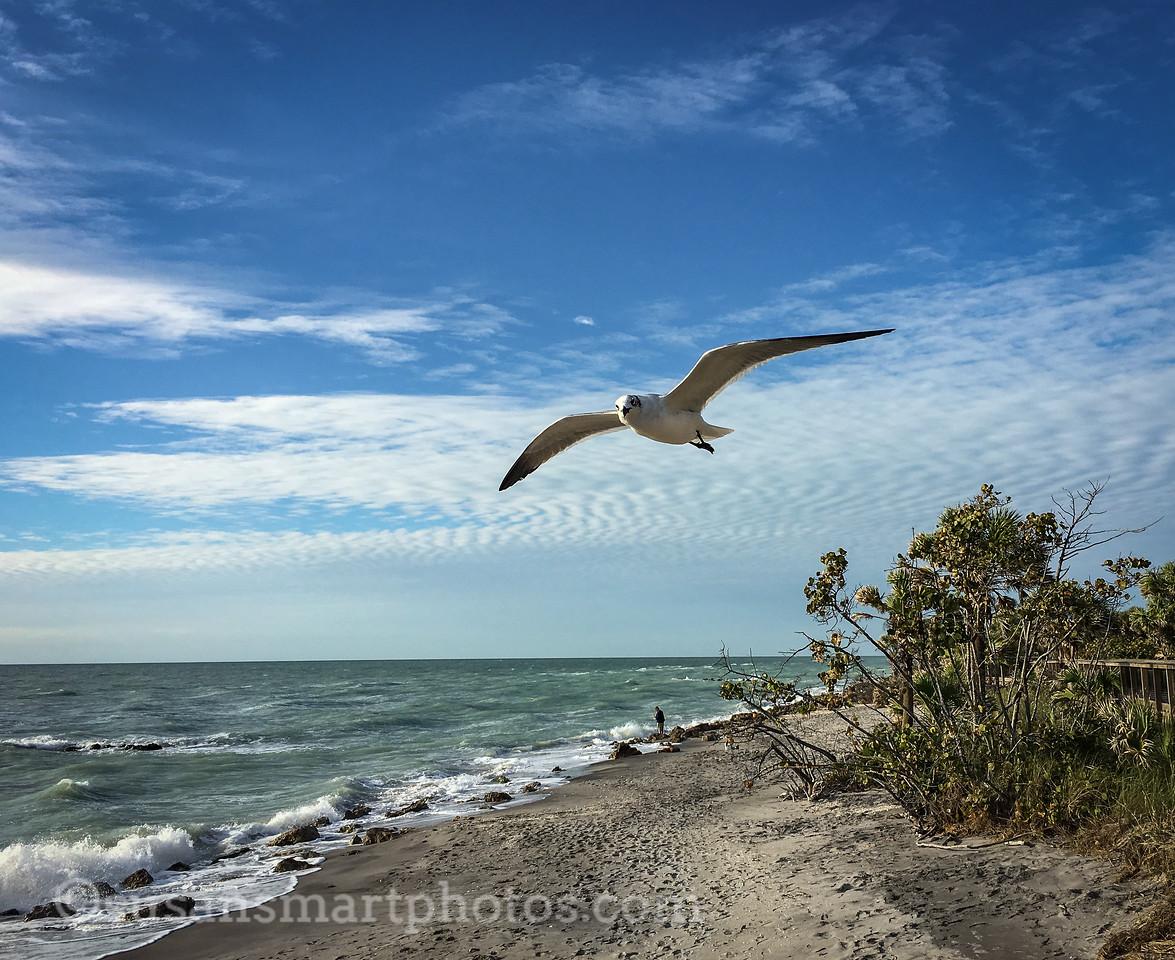 Casperson Beach, Venice, FL