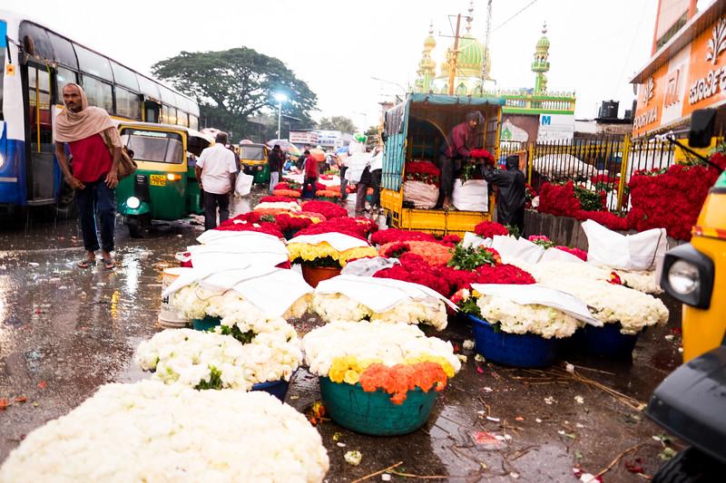 2019-09 Bangalore-17.jpg