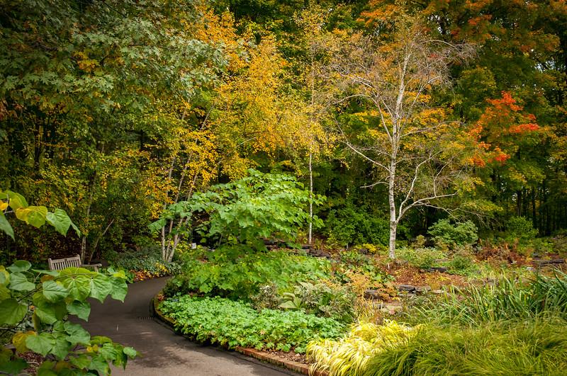 Arboretum_20151009-2132.jpg