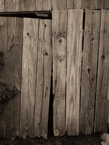 2014-09-06 Barn Door DSCN0296.jpg