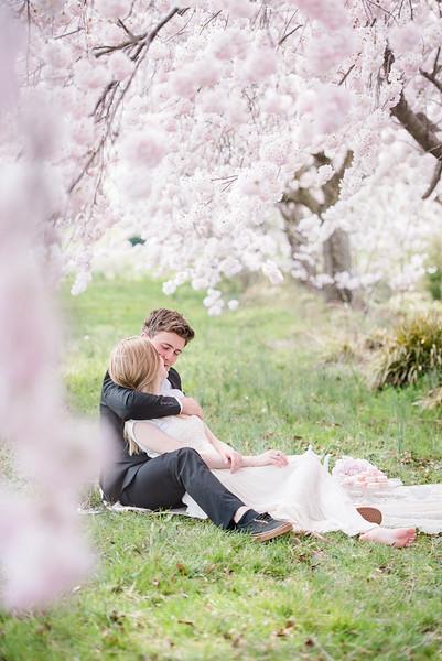 Cherry Blossoms (28 of 182).jpg