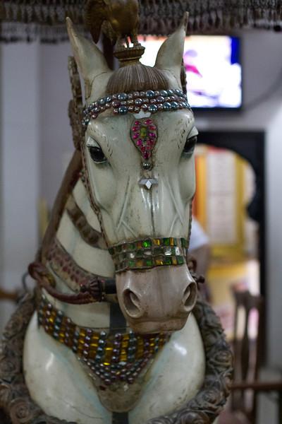 India_2012Feb-4871.jpg