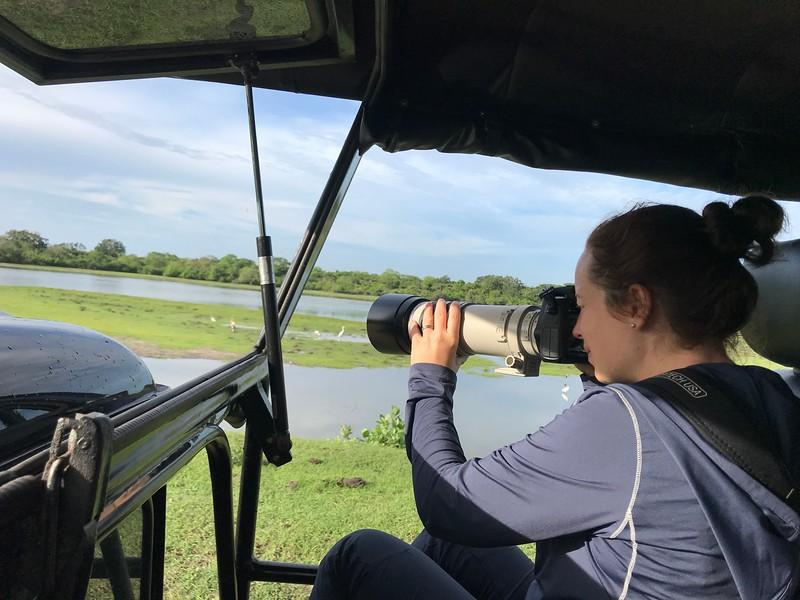 Photography on safari in Sri Lanka