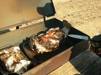 Feral Hog Hunting in Texas