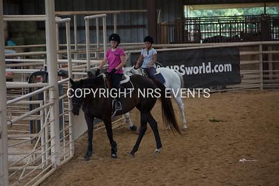 45th Annual Texas A&M AgriLife Extension  Summer Horsemanship School Program