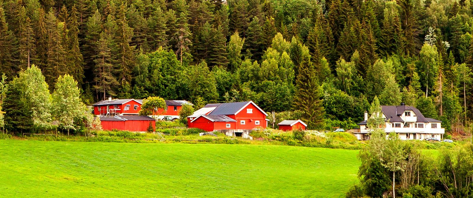 北歐旅途,漂亮的農室