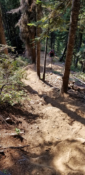 Another shot trying to gives you a hint as to how steep the trail is.  The trail gains abour 1400' in .75 miles!