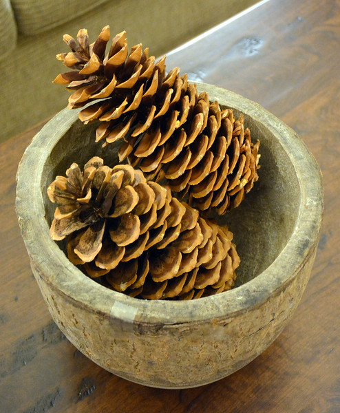 Pine cones in the lobby at the Taconic Hotel in Manchester, VT