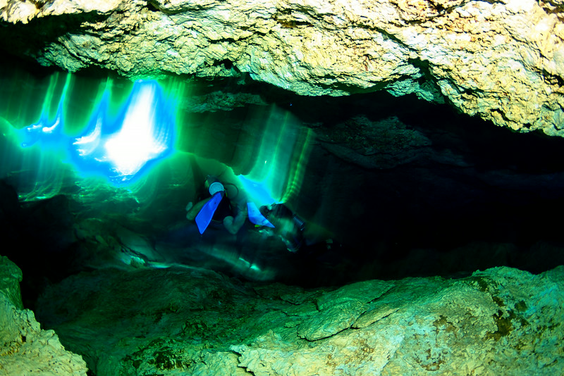 2014 Whale Shark - Cave Adventure-124.jpg