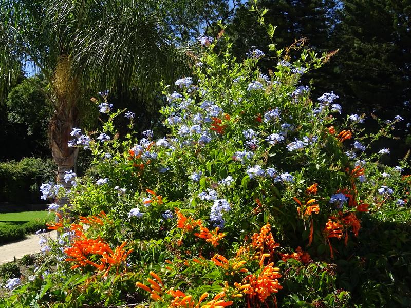 023_Windhoek. Government Gardens.JPG