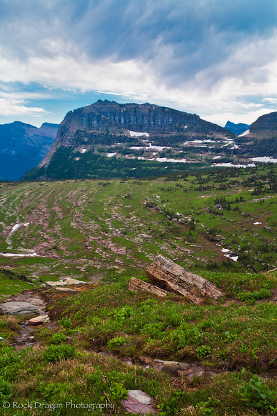 Logan Pass in Glacier National Park Montana