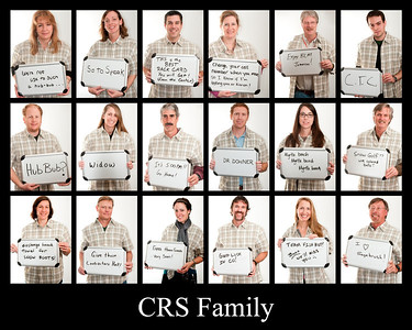 CRS March 2013