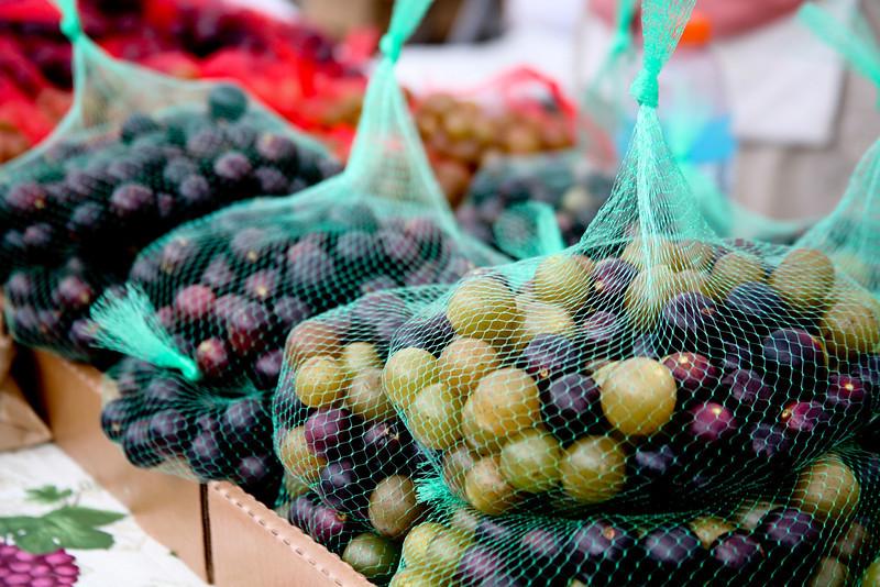 Fresh Muscadines  Ms State Fair Blue Homemade Jelly Winners Tim Cooper Farm & Vineyard