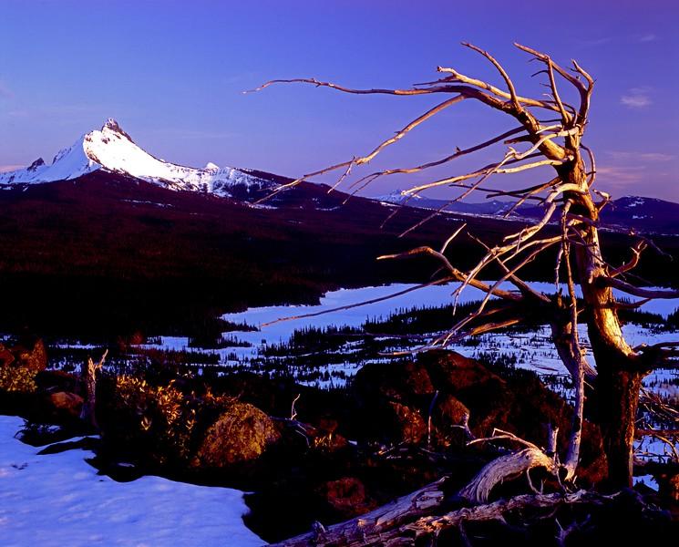 Mt Washington w Hayrick snag enh sf.jpg